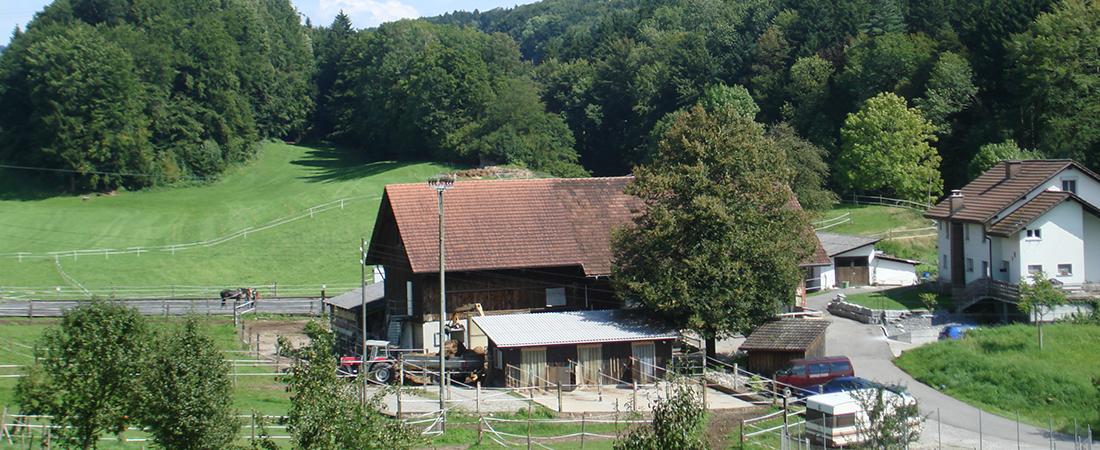 pferdestall-schweiz2